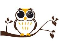 Nástěnné hodiny Clocker Owl