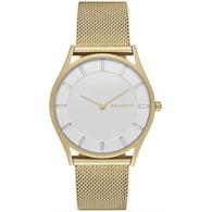 Dámské hodinky Skagen SKW 2377