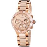 Dámské hodinky DKNY NY 8508